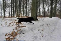 08_Helsingør_C-E_19.mar_2006_12