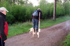 Natløb_11-maj_19