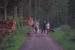 Natløb_11-maj_23